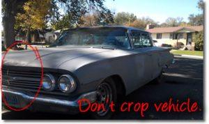 impala-crop2